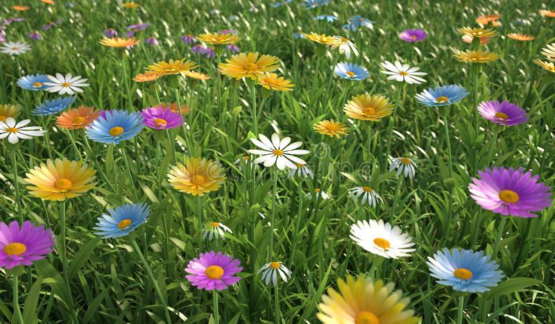 Soñar con campo de flores de muchos colores
